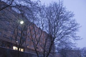 20100112_kl0818w